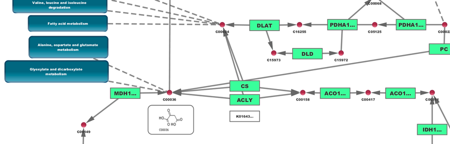 Cytoscape: An Open Source Platform for Complex Network