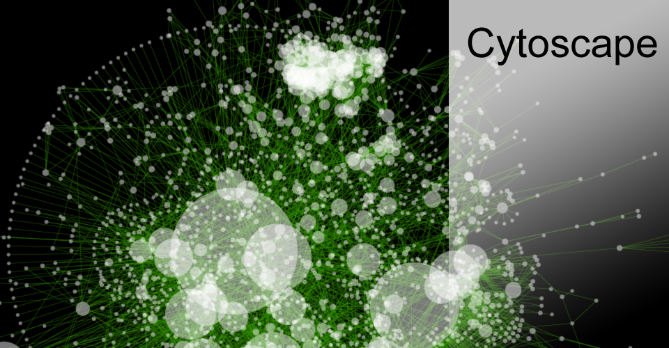 Cytoscape x64 full screenshot